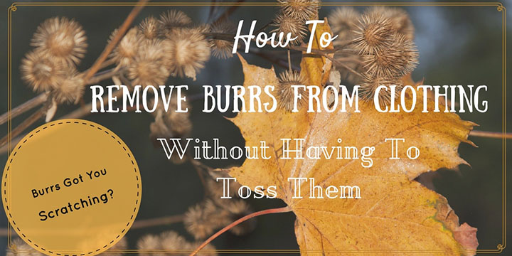 How To Remove Burrs From Clothing