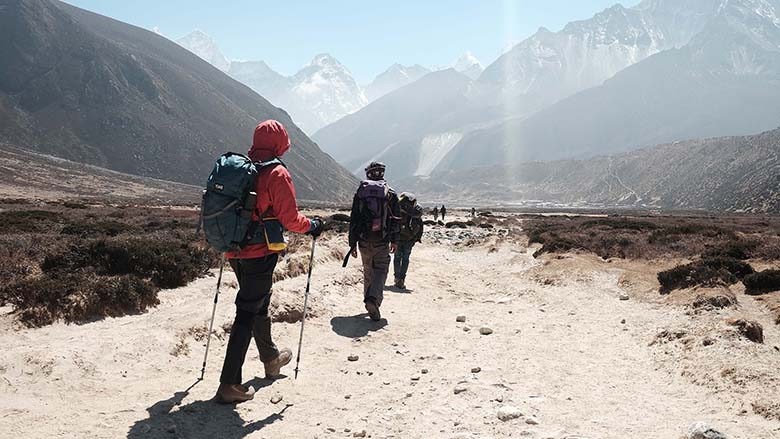 Trekking Poles For Camping